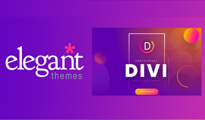 Why To Choose Elegant Themes Over Other Theme Providers?
