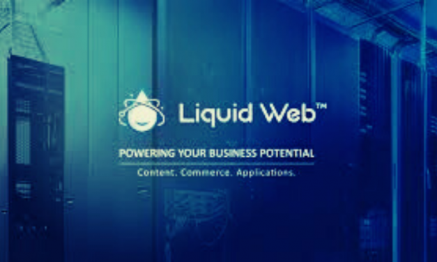 Liquid Web Hosting – What Are You Getting For Your Money?
